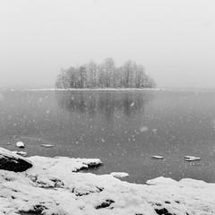 Mystic land (>>Marko<<) Tags: kuhasalo joensuu suomi finland pohjoiskarjala pyhselk jrvi lake snow snowing water islet landscape square blackandwhite bw monochrome