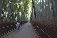 Kyoto - 30 (• CHRISTIAN •) Tags: japon japan asie asia kyoto kansai bambouseraie bamboo sagaogurayama arashiyama paysage landscape chemin sentier path nature femmes woman kimono nikon