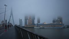 Foggy Morning in Rotterdam I (Ralf Muennich) Tags: rotterdam therotterdam erasmusbridge erasmusbrug wilhelminapier aidaprima fog