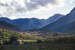 Oddoene sud (*Tamata*) Tags: supramonte valledioddoene dorgali vallata sardinia sardegna barbagia ogliastra