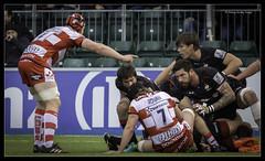 saracens v gloucester (jdl1963) Tags: saracens gloucester rugby union aviva premiership sport