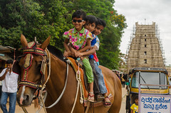 Horse ride- joy of travelling. (shayan444) Tags: travel trees people horse india green tourism childhood kids children temple ride joy journey tuktuk karnataka archietecture autorickshaw horseride greenbackground srirangapatna karnatakatourism incredibleindia srirangapatnatemple