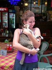 "amor gatuno • <a style=""font-size:0.8em;"" href=""http://www.flickr.com/photos/92957341@N07/9237866260/"" target=""_blank"">View on Flickr</a>"