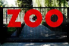 SAM_2588a_jnowak64 (jnowak64) Tags: zoo poland polska krakow cracow mik malopolska lato zwierzyniec krakoff laswolski