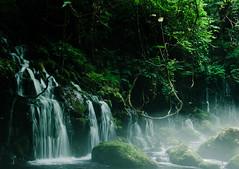 天然ミスト@元滝伏流水 (e_haya) Tags: waterfall akita 滝 nikond7000