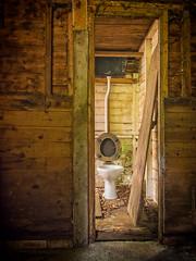 23rd August 2013 (Rob Sutherland) Tags: park wood uk england lake lumix decay district lakes toilet olympus national cumbria pancake far f25 omd hawkshead downthepan 14mm sawrey em5 lndp karzi