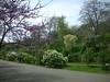 arboretum2010019
