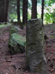 Geheimnisvolle Steinreihe bei Quellenreuth 04 (Rainer.Steinke) Tags: archaeology deutschland megalith dolmen saale menhir schwarzenbach archäologie steinkreis steinreihe quellenreuth