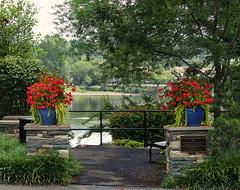New Hope Flower Pots (Atelier Teee) Tags: park pennsylvania railing geraniums newhope buckscounty delawareriver atelierteee terencefaircloth