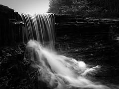 016 ([stephanie]) Tags: county white black water creek canon turkey waterfall lawrence alabama powershot