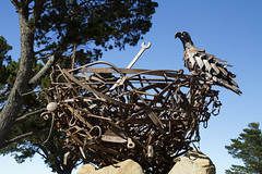 Nest III at the National Arboretum Canberra (Anna Calvert Photography) Tags: trees sky sculpture bird statue metal rocks nest eagle australia canberra nestiii natioanlarboretum