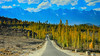 Road to Skardu (C@MARADERIE) Tags: road autumn mountains tree yellow horizontal landscape colorful nopeople northernareas colorimage skardu mygearandme mygearandmepremium mygearandmebronze mygearandmesilver flickrstruereflection1 flickrstruereflection2