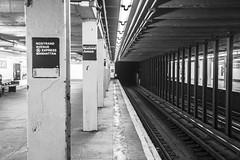 Around New York (elparison) Tags: new york usa apple beauty big metro pigeons