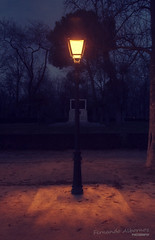 (Fernando Albornoz) Tags: madrid park parque light urban mist lamp fog night farola lamppost midnight niebla medianoche