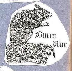 Burra Tor (Bridgemarker Tim) Tags: letterboxing rats animalsdartmoor lesserknowntors letterboxstamps