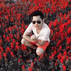 ปากแดงจุงเบย 555+  #ทุ่งดอกไม้ #เชียงราย