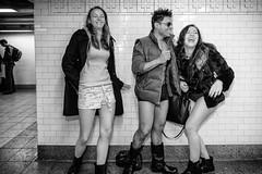 No Pants Subway Ride 2014 - 13 (mkc609) Tags: street nyc newyorkcity urban blackandwhite bw ny newyork subway blackwhite candid streetphotography xe1 nopantssubwayride fujixe1 nopantssubwayride2014