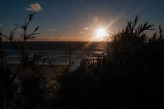 Sunset at platja Coln (faltimiras) Tags: ocean chile parque beach pacific playa national np region parc nacional rios pacifico platja oceano valdivia alerce ocea colun costanero