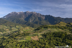 Mount Kinabalu, hills, crop fields, forest - Kundasang village & Mount Kinabalu - Sabah, Malaysia (Christian Loader) Tags: morning blue mountain green field forest sunrise landscape scenery southeastasia farm hill farming earlymorning scenic vegetable hills crop malaysia borneo vegetation fields mountkinabalu crops growing moutain sabah kun