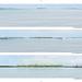 Junya Ishigami - Port of Kinmen Passenger Service Center 設計提案 P07.jpg