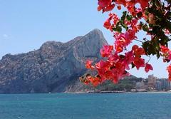 Calp (Ginas Pics) Tags: vacation españa smart rock spain holidays mediterranean tourist bougainvillea costablanca ginaspics mediterraneanlandscape bestofspain httpginanews05blogspotcom peñondifach reginasiebrecht