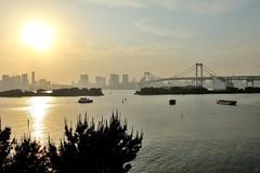 (~ ZivE  ~) Tags: japan tokyo nikon    odaiba rainbowbridge  2470mmf28  d700