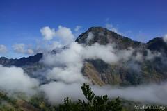 View on the way to Segara Anak. Rinjani, Lombok (18 Jun 2014) (Vinchel) Tags: zeiss 35mm indonesia t sony f2 lombok nusa barat sonnar rinjani tenggara rx1