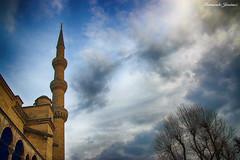 Minarete (alanchanflor) Tags: mezquita minarete azul estambul turquia árbol nublado canon mosque asia religión islam