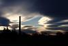 Erection Tourmentée / Erection Tormented (Phil Chapp) Tags: ciel nuage cheminée tourmente rêverie canon 5dmarkii philchapp sky cloud fireplace turmoil daydreaming