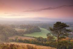 Colley Hill (craig.denford) Tags: colley hill reigate surrey hills craig denford
