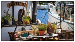 Matilda - Canon EOS 7D - EF-S18-135mm f-3.5-5.6 IS (Beek2012) Tags: canon canoneos7d efs18135mmf3556is europe europa sweden sverige stockholm summer outdoor boat strandvgen matilda