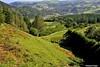 Valle del Deba. (Howard P. Kepa) Tags: paisvasco euskadi gipuzkoa deba riodeba valle montañas edificios casas puente arboles
