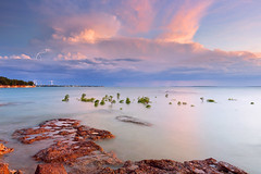 East Point lightning show (Louise Denton) Tags: lightning storm nt darwin australia northernterritory mangroves ocean sea water rocks longexposure cloud weather wetseason tropical bolt cg pink pastel