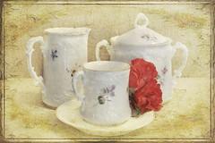Coffee at Grandma's (boeckli) Tags: coffee china porcellain porzellan kaffee tasse cup textures texturen texture textur lenabemannaj grossmutter grandma painterly indoor photoborder stilllife