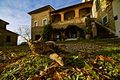 Autumn country house in Toscana (Fabrizio Reali (Fabri93)) Tags: canon cat photo toscana sun sunset sky house country autumn colors nature