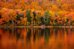 Color (jverstrate) Tags: fall autumn color trees leaves lake water