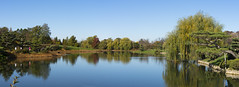 Chicago Botanic Garden in early November (s.d.sea) Tags: chicago botanic garden fall autumn november sunny outside outdoors water pond trees landscape panorama blue sky leaves pentax k5iis enjoyillinois illinois midwest northshore glencoe