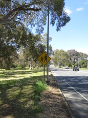 1980s 'Pedestrians' warning signs on northbound side of Golden Grove Rd (RS 1990) Tags: goldengroverd wynnvale redwoodpark teatreegully adelaide southaustralia thursday 27th october 2016 trafficsign 1980s pedestrians children diamond