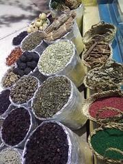 El Gouna 2016 (claudia stucki) Tags: el gouna 2016 holiday ferien egypt ägypten sheraton miramar herbst redsea