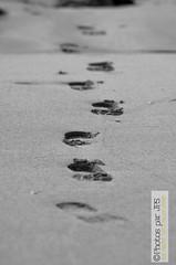 les pas de Lancieux (photos par JPS) Tags: clean diffusionweb lancieux ou pro plage poursiteweb quoi type