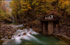 RIO BELLÓS. (TOYOGRACOR) Tags: aplusphoto color flickrdiamond bej canon explore flickr fiore dof mygearandme mygearandmepremium mygearandmebronze mygearandmesilver godlovesyou flickrflorescloseupmacros otoño rojo rojos mywinners follaje serenidad autumn vio riobellos cañondeañiscolos aragón pireneos huesca cañondelbellos agua rio corriente verde amarillo vegetacion naturaleza pireneoaragones parquenacionaldeordesa monteperdido