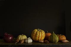 Autumn gifts (Wendy:) Tags: stilllife autumn pumpkins vegetables tiltshift lowkey availablelight harvest colors colours