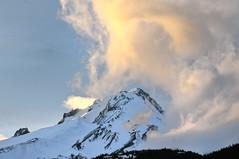 Mount Hood (Davey S) Tags: mounthood oregon