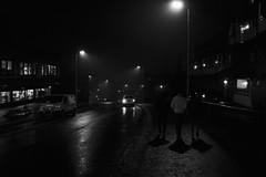 Oslo in November (Mona_Oslo) Tags: streetshot nightshot wetpavement light dusk monajohansson veitvet monochorme