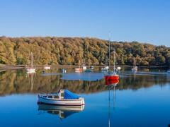 Crosshaven (Frankie Brennan) Tags: crosshaven munster cork ireland boats water sky trees calm reflection winter olympus omd em5 22mm f71 red blue outdoor landscape