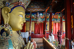 A monk passes a statue of the Buddha Maitreya at the Thikse Monastery in the trans-Himalayan region of Ladakh. (Leonid Plotkin) Tags: asia buddhism buddhist ceremony festival india kalachakra ladakh religion religious rite ritual tradition traditional