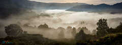 Mists Over Rydal Water (Dave Massey Photography) Tags: mist rydalwater lakedistrict cumbria inversion clouds whitemosswoods