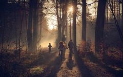 Family-5929-2 (EbE_inspiration) Tags: light woods walking family trip bike sun nikon outdoor outside nature naturallight nikond7100 d7100
