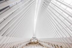Cathedral of Light (gimmeocean) Tags: oculus theoculus worldtradecentertransportationhub lowermanhattan groundzero manhattan newyorkcity nyc newyork ny