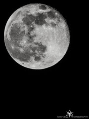 2013 SuperMoon (Eye-View Photography) Tags: moon white black nikon space fullmoon eyeview superzoom 2013 p510 flickraward supermoon